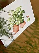 Grafika - Letná pohodička - Print   Botanická ilustrácia - 12067779_