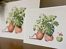 Grafika - Letná pohodička - Print   Botanická ilustrácia - 12067780_