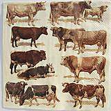 Papier - Servítka  P 135 - 12070238_