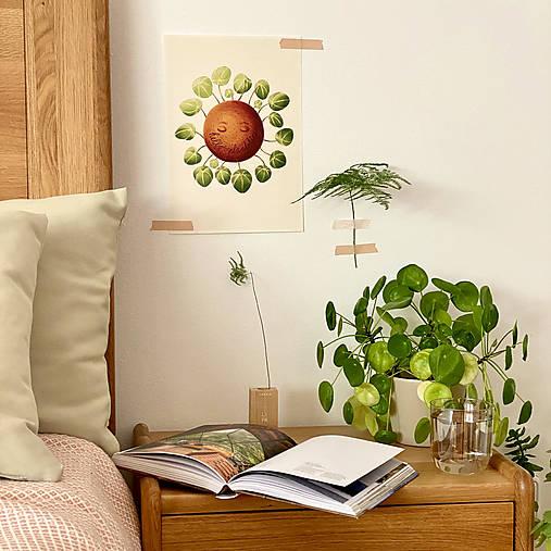 Hello plantshine! - Print | Botanická ilustrácia