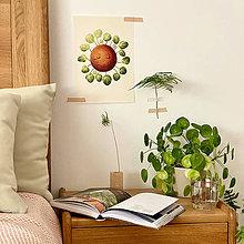 Grafika - Hello plantshine! - Print | Botanická ilustrácia - 12069696_