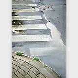 Obrazy - Louže - olejomalba na plátně - 12081658_