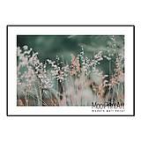 Fotografie - Print Art, plagát, Grass No.4, obrázok A4/A3 - 12085324_