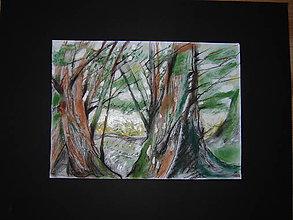 Kresby - Kresba-V lese - 12089103_