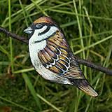 Brošne - Vrabec - kožená brož s malbou - 12092935_