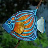 Brošne - Blue Ring Angelfish - kožená brož s malbou - 12107948_