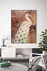 Obrazy - Páv biely - 12137760_