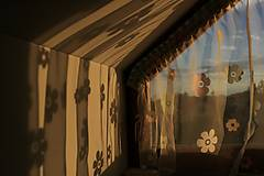 Fotografie - Svetlo a kvety - 12140969_