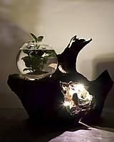 Dekorácie - Akvárium z dreva so svetlom - 12144834_