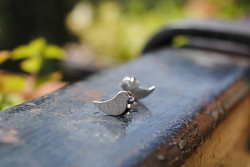 Náušnice - Vtáčatká zlaté - 12152641_