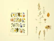 Obrázky - Obrázok-les/lúka/záhrada - 12180375_