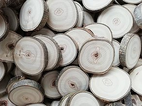 Dekorácie - Drevené plátky (priemer 2,6 - 3,2 cm) - 12180641_