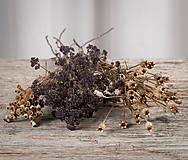 Dekorácie - Sušené kvety, plody (oregano (stredná)) - 12189940_