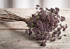Dekorácie - Sušené kvety, plody (oregano (veľká)) - 12189947_
