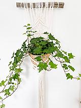 Dekorácie - Makramé záves na kvet Koline - 12214712_