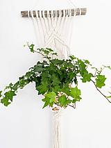 Dekorácie - Makramé záves na kvet Kaila - 12214716_