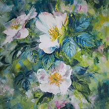 """Obrazy - obraz """"slobodné, divé ruže"""" - 12219716_"""