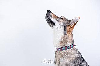 Pre zvieratká - Obojok Folk modrý - 12220033_
