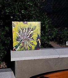Obrazy - Obraz: Kvet, 30 x 30 cm - 12223807_
