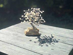 Dekorácie - Stromčeky šťastia - 12227804_