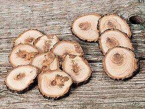 Drobnosti - Drevené plátky - marhuľa (špeciálne (balenie 12 ks) priemer 4 - 5,5 cm) - 12242912_