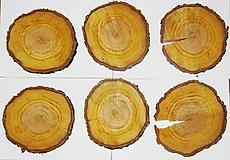 Pomôcky - Veľké drevené pláty zo stromu marhuľa - sada 6 kusov, priemer 19 cm - 12252069_