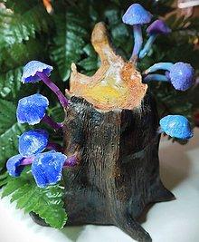 Dekorácie - Peň so svietiacimi hubami - 12289199_