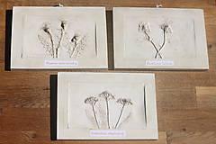 Obrazy - Ďatelina lúčna - botanický obraz - 12323261_