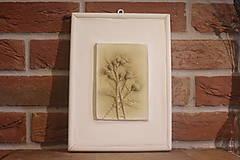 Obrazy - Pestrec mariánsky- botanický obraz - 12323318_