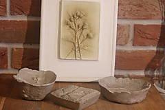 Obrazy - Pestrec mariánsky- botanický obraz - 12323322_