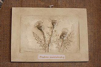 Obrázky - Pestrec mariánsky- botanický obraz - 12323224_