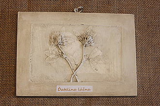 Obrazy - Ďatelina lúčna - botanický obraz - 12323259_