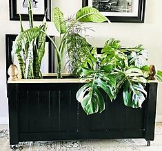 """Nábytok - Interiérová truhlica na rastliny vo vintage style """"Andreas"""" - 12334571_"""