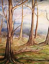 Obrazy - Ranný les (originál) - 12350669_