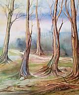 Obrazy - Ranný les (originál) - 12350671_