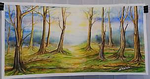 Obrazy - Ranný les (originál) - 12350673_