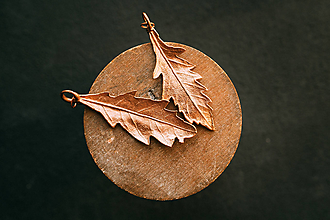 Náušnice - Náušnice dub červený - 12351227_
