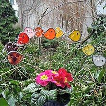 Dekorácie - Ptáci Pepíci - zápich - 12353298_