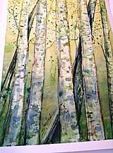 Obrazy - Jarné brezy (originál) - 12363697_