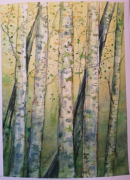 Jarné brezy (originál)