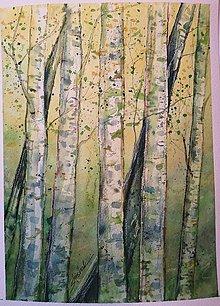 Obrazy - Jarné brezy (originál) - 12363696_