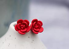 Náušnice - Polymerové náušnice - Vianočná ruža - 12378490_