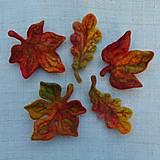Odznaky/Brošne - ...plstená brošňa - jesenný list... - 12387389_