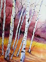Obrazy - Jesenné Brezy (Originál) - 12383626_