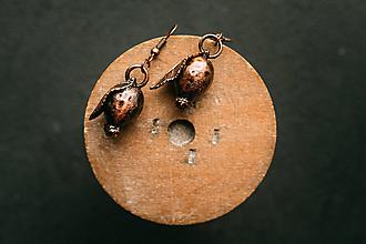 Náušnice - Náušnice šípka s lístkom - 12420711_