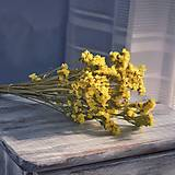 Suroviny - Žlté limonky - kytička - 12424291_