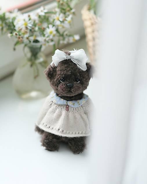 Mini Teddy Uliana