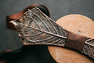 Doplnky - Motýlik pagaštan konský - 12424479_