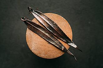 Náušnice - Náušnice vŕba patina - 12424527_