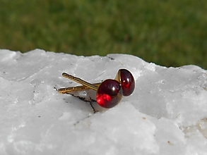 Náušnice - red garnet in gold-pyrop-granát- - 12436041_